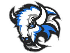 Ekipni logotip HC Bizons Nitra
