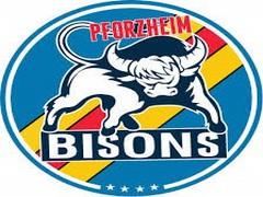 Ekipni logotip EC Pforzheim