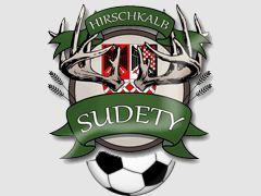 Лого на тимот